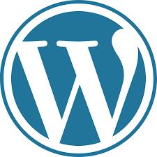 sito web wordpress